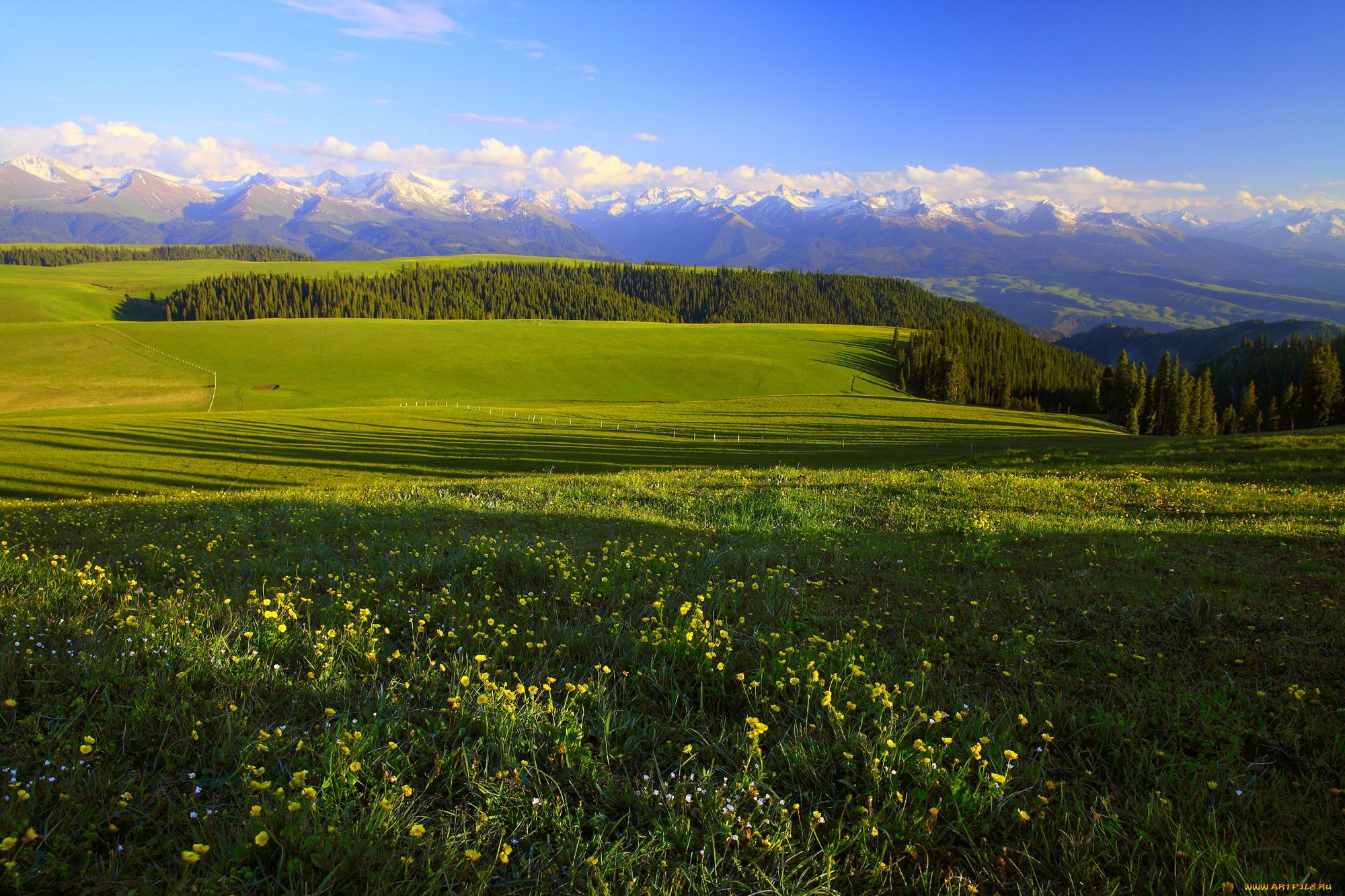 фото красивые пейзажи луга и поля зимние холодные